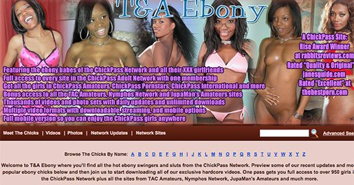 One of the best paid xxx sites offering class-A black pussy videos