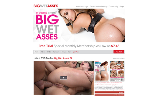 this one is the most awesome paid porn website to access big butt adult videos